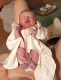 Newborn младенец после рождения стоковое изображение rf