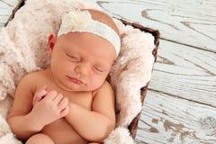 Newborn младенец стоковая фотография rf