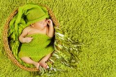 Newborn сон младенца, красивый спать младенческий мальчик ребенк, зеленый Стоковое фото RF