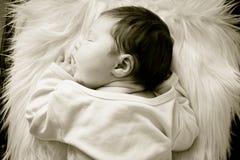 newborn спать Стоковое Изображение