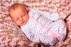 newborn спать Стоковая Фотография