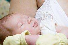 newborn спать Стоковые Изображения RF