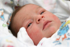Newborn. Baby girl, hour old Royalty Free Stock Photo