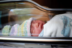 Newborn. A few hours after delivery Stock Image