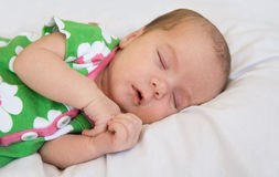 Newborn. Sleeping Against a White Background Stock Images