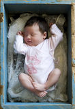 Newborn. Baby girl sleeps in a wooden box Stock Photography