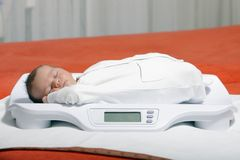Newborn. Baby boy on weight scale Stock Photography