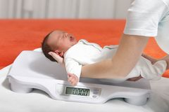 Newborn. Baby boy on weight scale Stock Photos