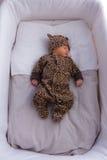 Newborn Royalty Free Stock Photos