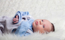 Newborn Royalty Free Stock Images