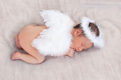 Милый характер newborn ангела спать Стоковое Изображение