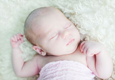 Newborn Стоковое фото RF
