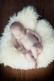 Newborn Стоковое Изображение RF