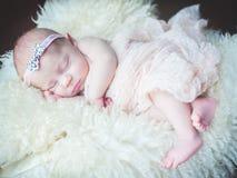Newborn Стоковое Изображение