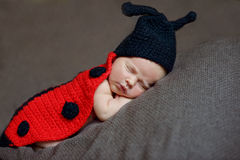 Newborn Стоковое Фото
