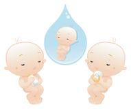 newborn Стоковая Фотография