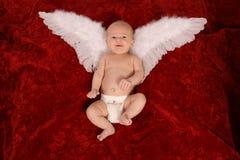 Newborn Angel. Little Angel on Red Stock Photo