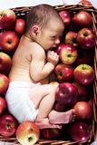 Newborn in apples. Newborn in the basket with apples Stock Photography
