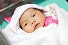 Newborn asian baby girl Royalty Free Stock Photo