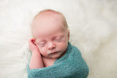 Newborn Asleep Royalty Free Stock Image