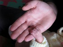Tiny Fingers Holding Hand. Newborn babies have an innate grasping reflex; however, for the first 2 months, these movements are involuntary and instinctual. Till Royalty Free Stock Images