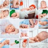 Newborn babies photos set Royalty Free Stock Photos