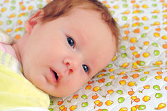 The newborn. The baby. Royalty Free Stock Photos