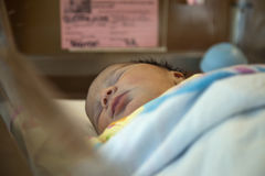 Newborn Baby. A newborn baby is sleeping in the hospital royalty free stock image