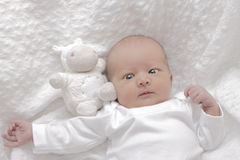 Newborn baby. Girl resting on a white blanket stock images