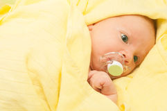 Newborn Baby Royalty Free Stock Photos