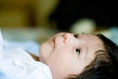 Newborn baby Stock Photography