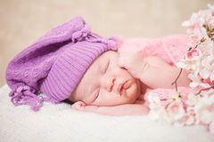 Sleeping  newborn baby (at the age of 14 days) Royalty Free Stock Images