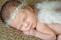 Newborn baby with angel wings royalty free stock photo