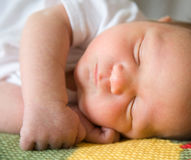 Newborn baby asleep. Stock Photography