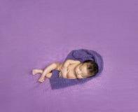 Newborn baby asleep on a purple blanket Stock Image
