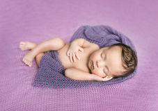 Newborn baby asleep on a purple blanket Stock Photos