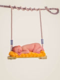 Newborn baby asleep on swing Royalty Free Stock Photography