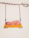 Newborn baby asleep on swing Royalty Free Stock Photography