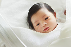 Newborn baby. Newborn babies were sleeping in clinic Stock Images