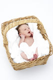 Newborn Baby In Basket Stock Image