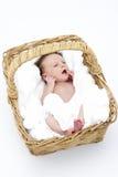 Newborn Baby In Basket stock image