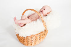 Newborn Baby in a basket. A beautiful baby girl with cute facial expression lying in a basket - two months old Royalty Free Stock Photo