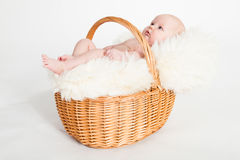 Newborn Baby in a basket Stock Photos