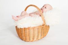 Newborn Baby in a basket stock photos