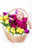 Newborn baby in basket Royalty Free Stock Images