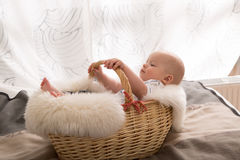 Newborn baby in the basket Royalty Free Stock Photography