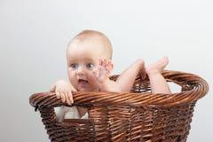 Newborn baby in basket Stock Photography