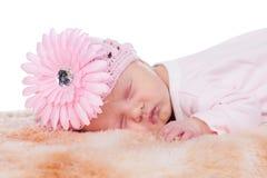 Newborn baby. Beautiful female newborn baby with pink flowersleeping Royalty Free Stock Photo