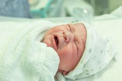 Newborn baby after birth. In hospital stock images