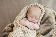 Newborn Baby In A Blanket royalty free stock photos